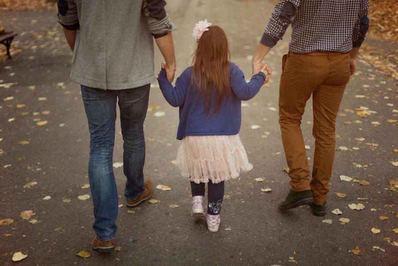 american adoptions adoption definition how to define adoption