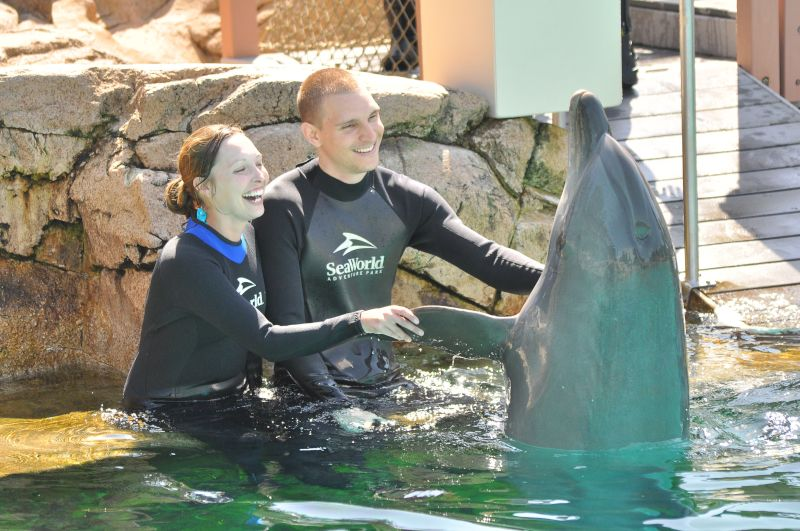 Meeting Dolphins at Sea World