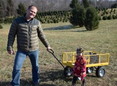 Adoptive Family Photo: Looking for the Perfect Christmas Tree, click to view bigger version