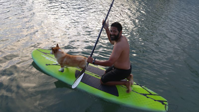 Paddleboarding with Our Dog, Norman