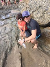 Adoptive Family Photo: Exploring with Daddy at the Beach, click to view bigger version