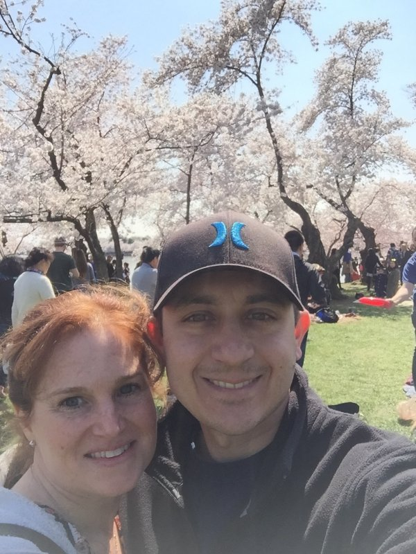 Cherry Blossoms Festival