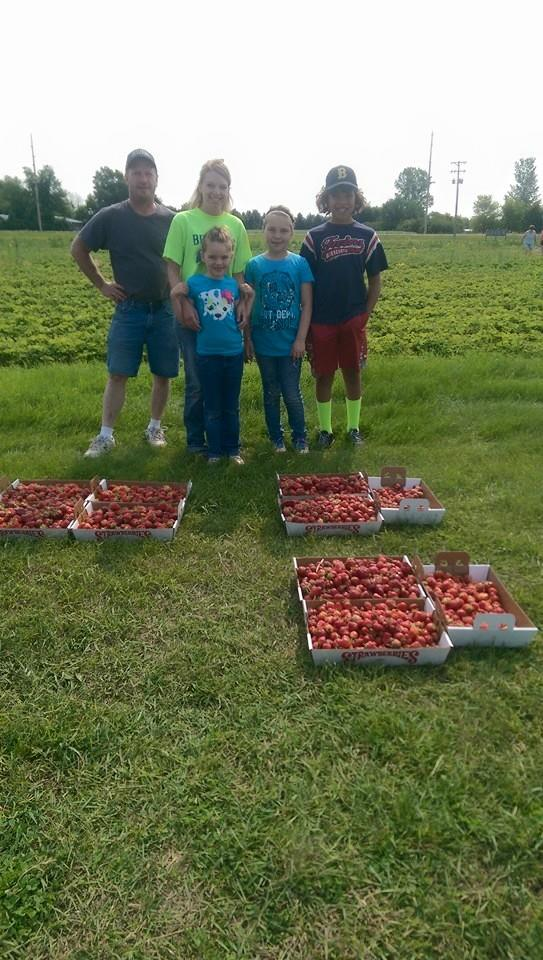 A Fun Day Picking Strawberries