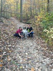 Adoptive Family Photo: Trail Walk with the Dogs, click to view bigger version