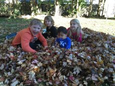 Adoptive Family Photo: Playing in the Leaves, click to view bigger version