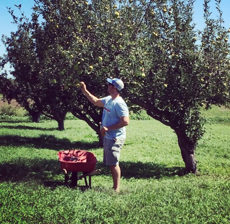 Jim Picking Apples