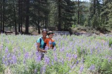 Adoptive Family Photo: Anu & Kiran Hiking Through the Wildflowers, click to view bigger version