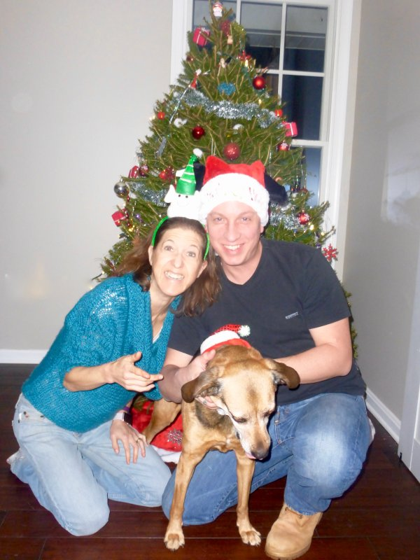 Attempting a Christmas Photo with Our Dog, Lucy