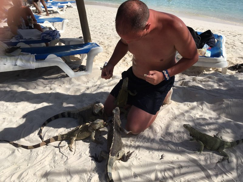 Feeding Iguanas in Aruba