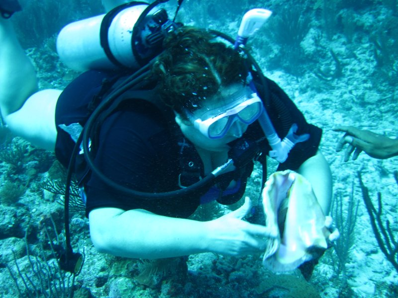 Diving the Reef in Belize