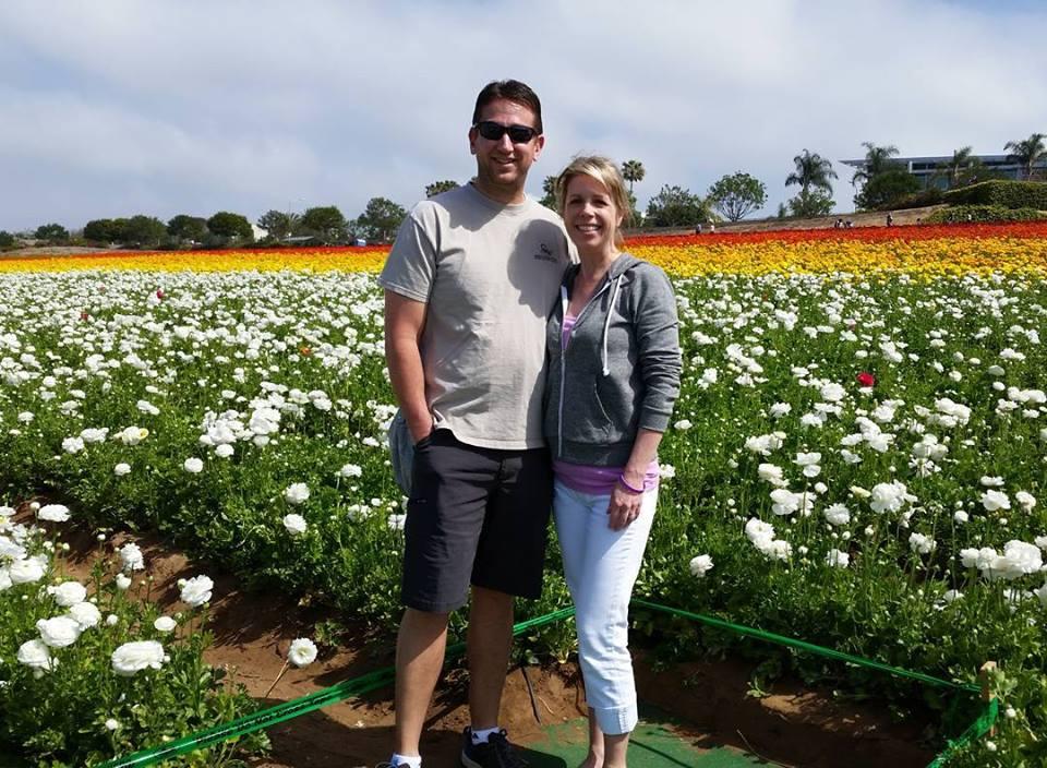 The Beautiful Flower Fields in Carlsbad-San Diego