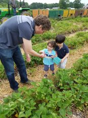 Adoptive Family Photo: Berry Picking with the Boys, click to view bigger version