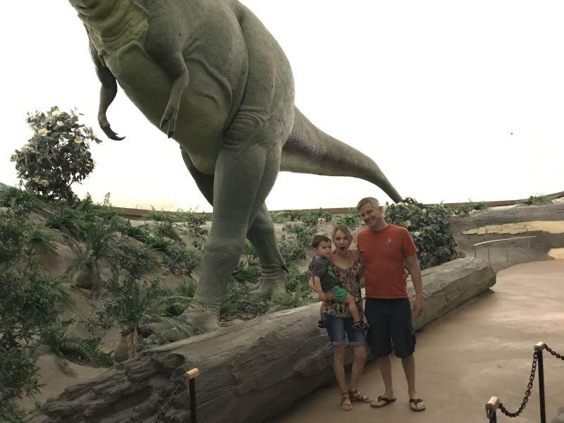 ROAR! Visiting a Dinosaur Museum