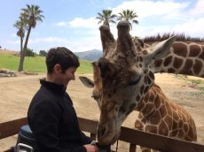 Adoptive Family Photo: Jamie Feeding a Giraffe, click to view bigger version