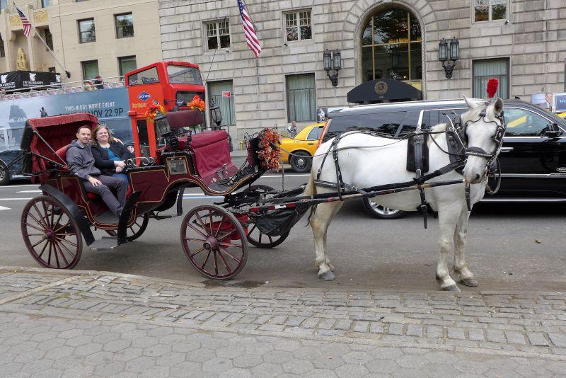 Enjoying a Carriage Ride