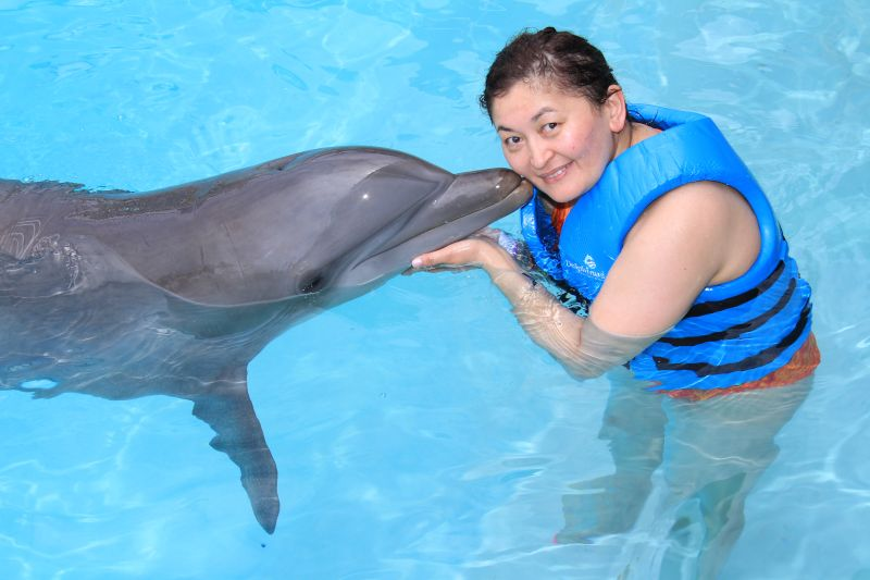 Kissing Dolphins in Cancun