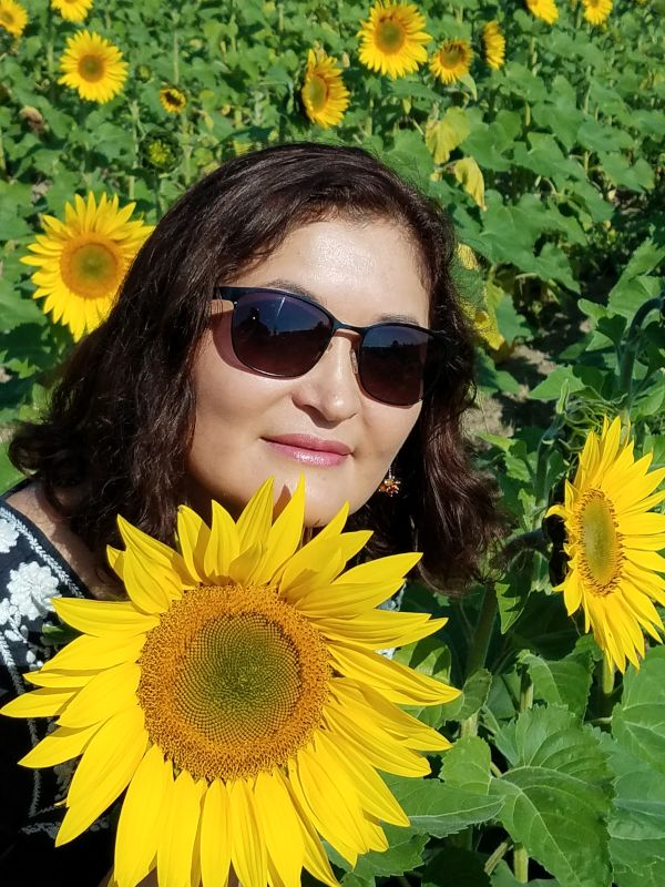 Saule in a Sea of Sunflowers