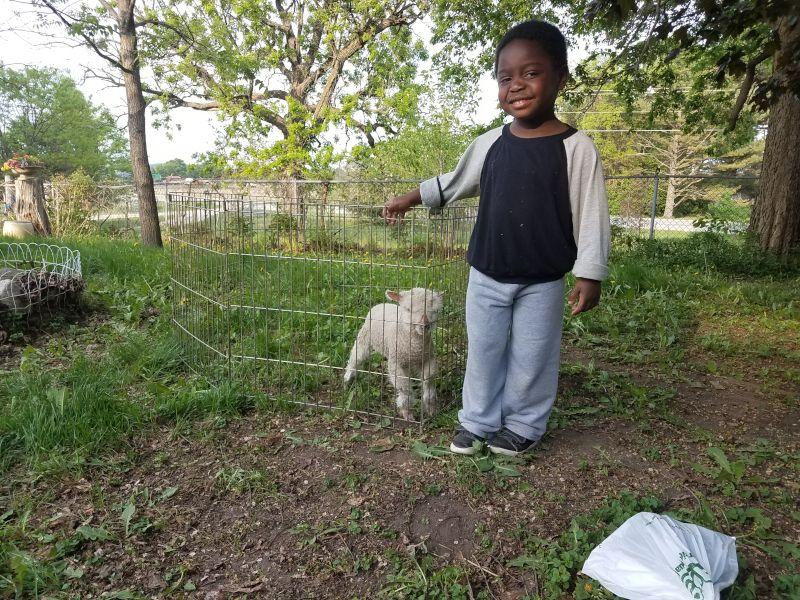 Isaac With a Baby Lamb