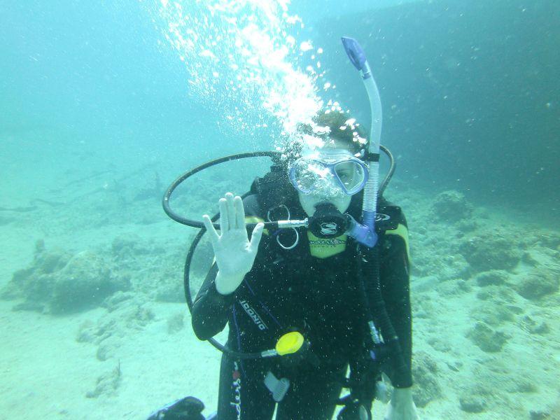 Tara Scuba Diving