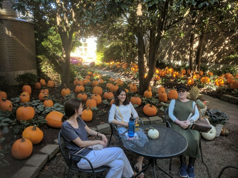 Pumpkin Patch With Family