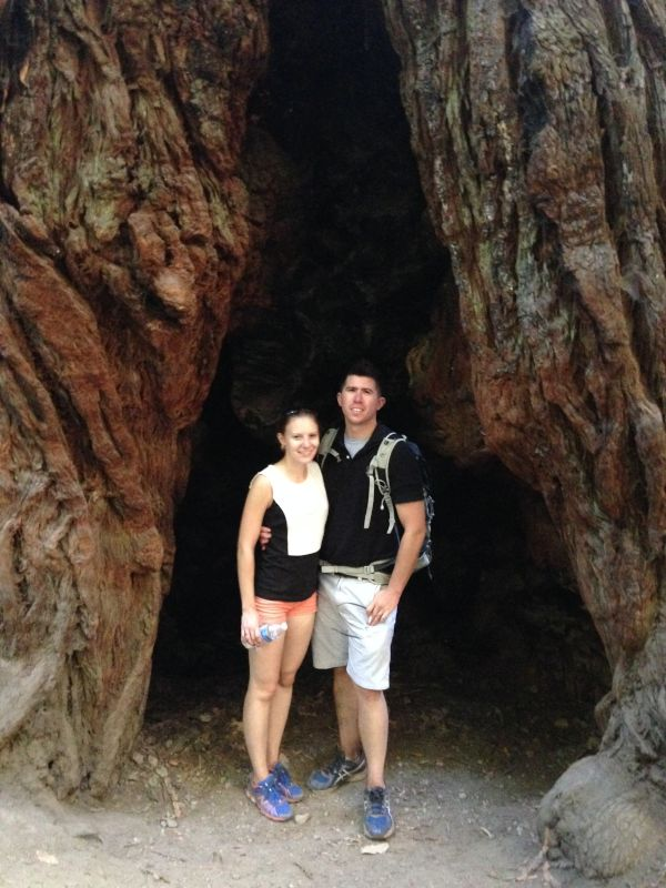 Standing in a Tree in the Redwood Forest