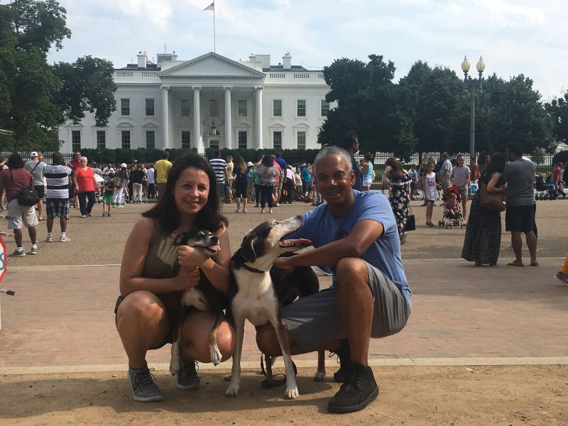Visiting D.C. with the Dogs