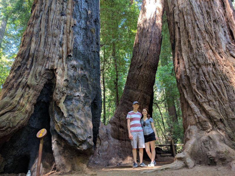Visiting Redwood National Park