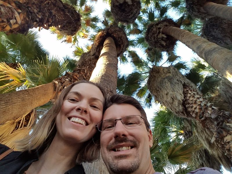 Having Fun in a Palm Tree Forest