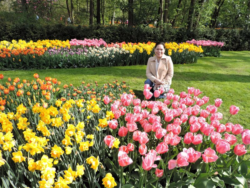 Enjoying the Flowers in the Netherlands