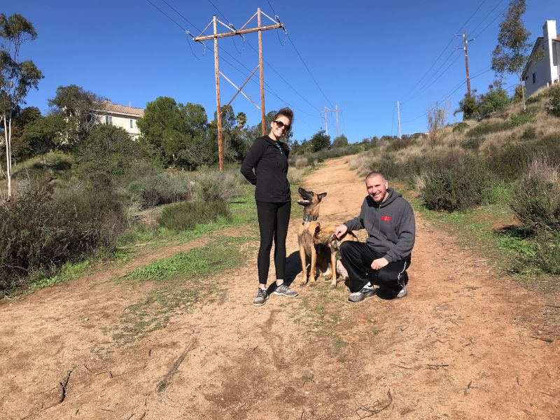 Hiking With Our Dogs