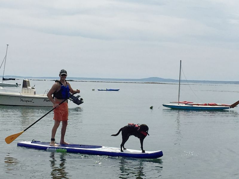 Kevin Paddleboarding With Wrigley