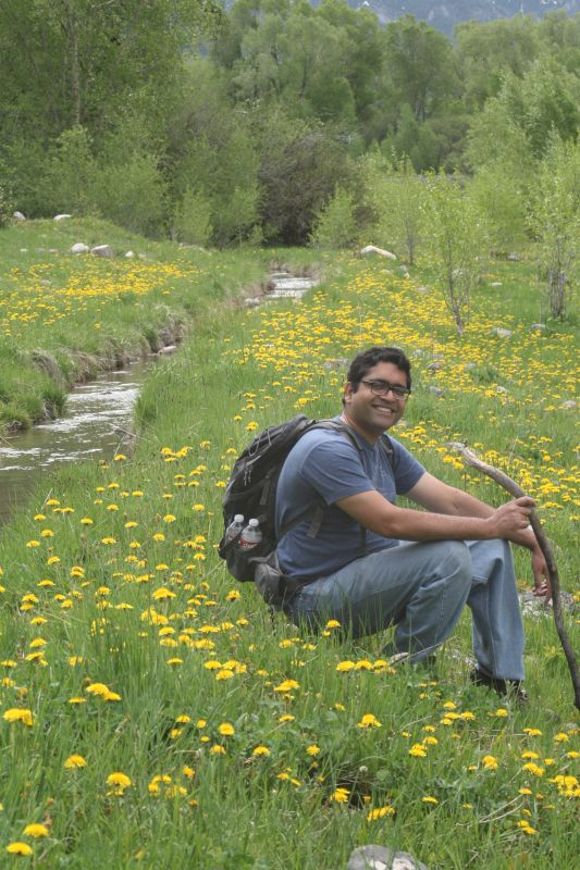 Strolling in a Valley of Flowers in Wyoming