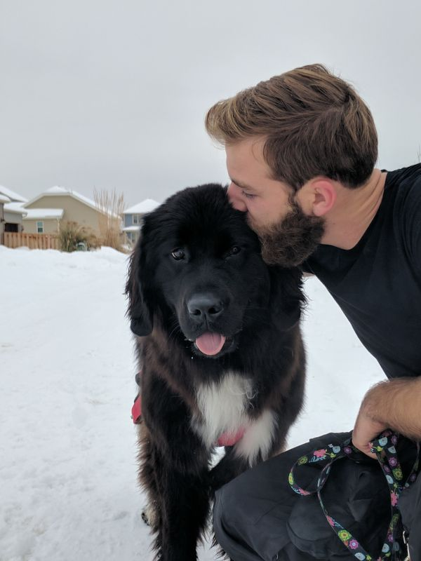 Ben & Luna Love the Snow!