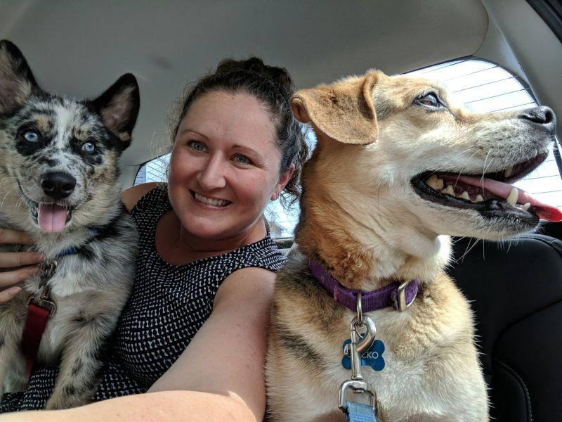 Jara With the Pups
