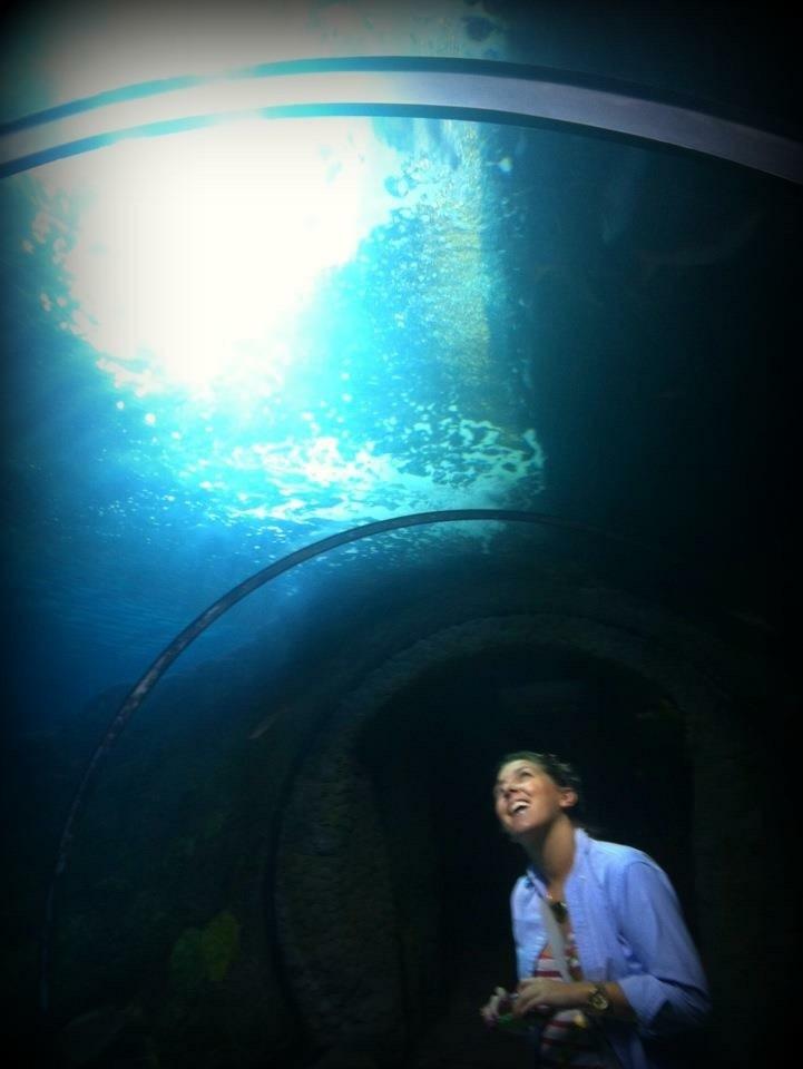 We Love Aquariums!