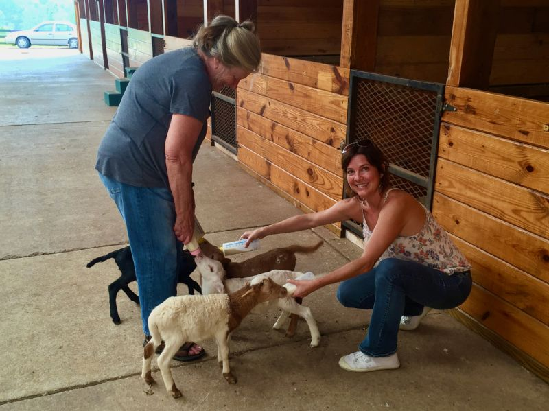 Feeding Baby Goats at Grandma's Farm