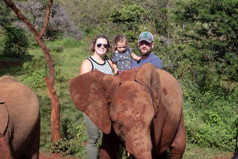 Meeting Orphaned Elephants in Nairobi