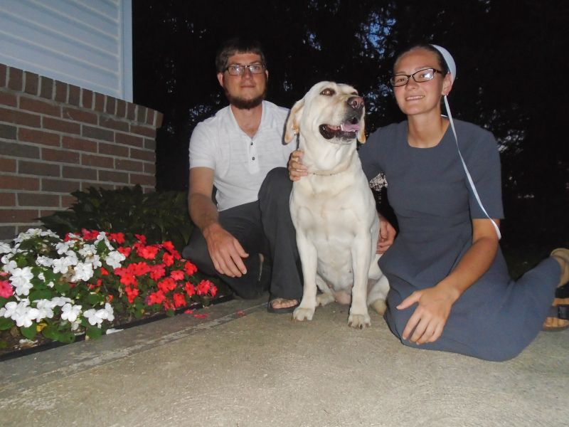 Enjoying a Warm Summer Night with Our Dog, Queen