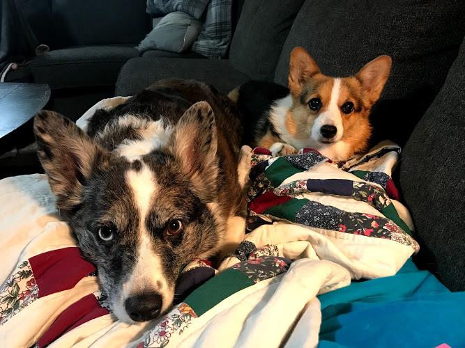 Merle & Quincy