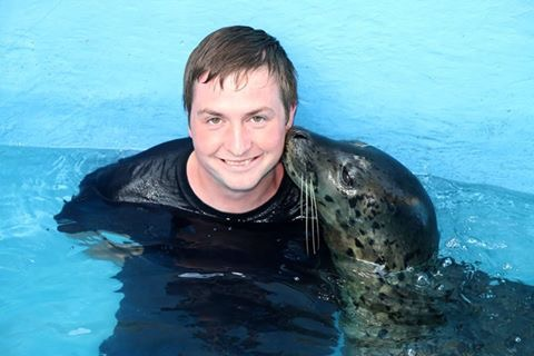 Interacting With Seals in Florida