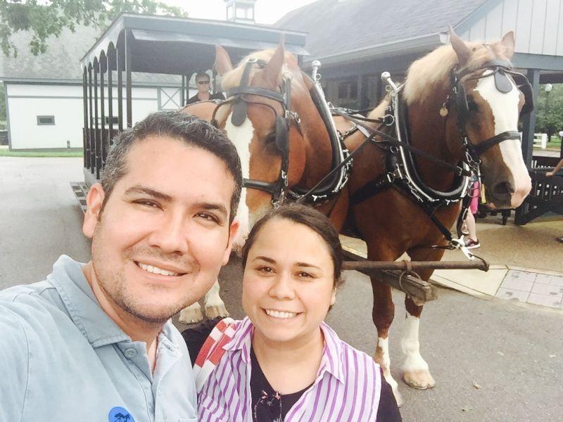 Beautiful Horses in Kentucky