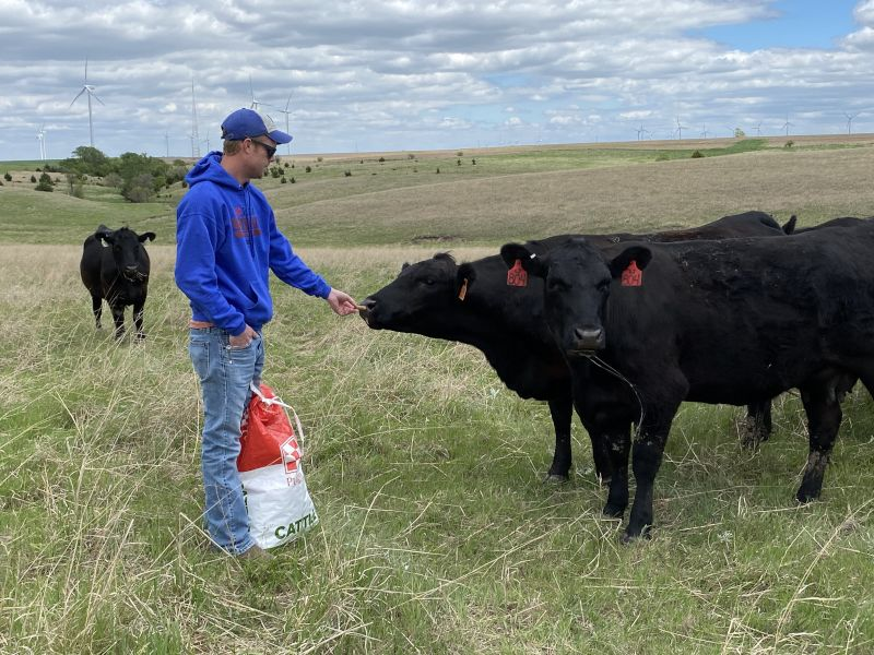 Lloyd With Our Cattle
