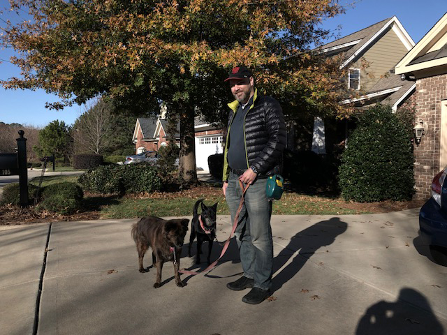 Taking Our Dogs for a Walk