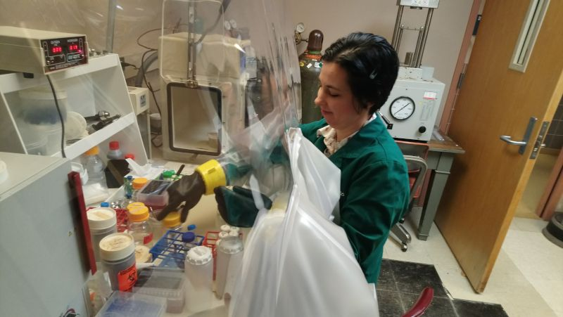 Katie Working in the Lab