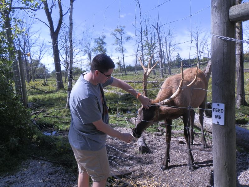 Ryan Feeding an Elk