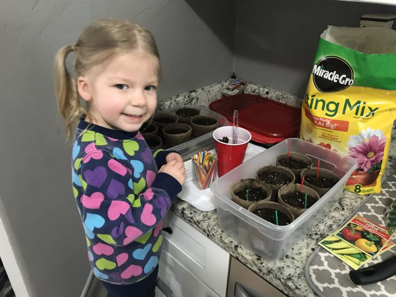 Planting Seeds for the Garden