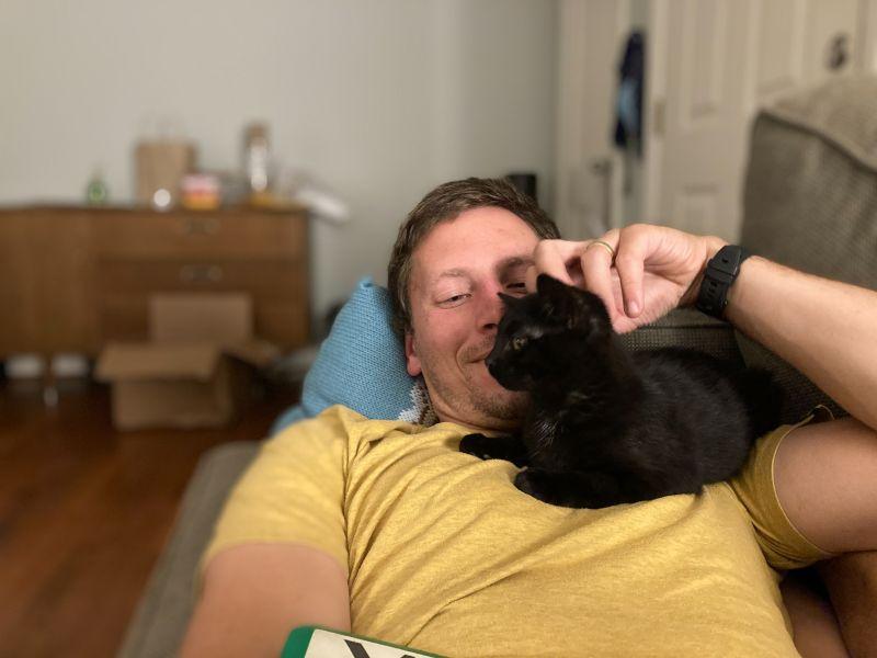 Jay & Lila Kitten