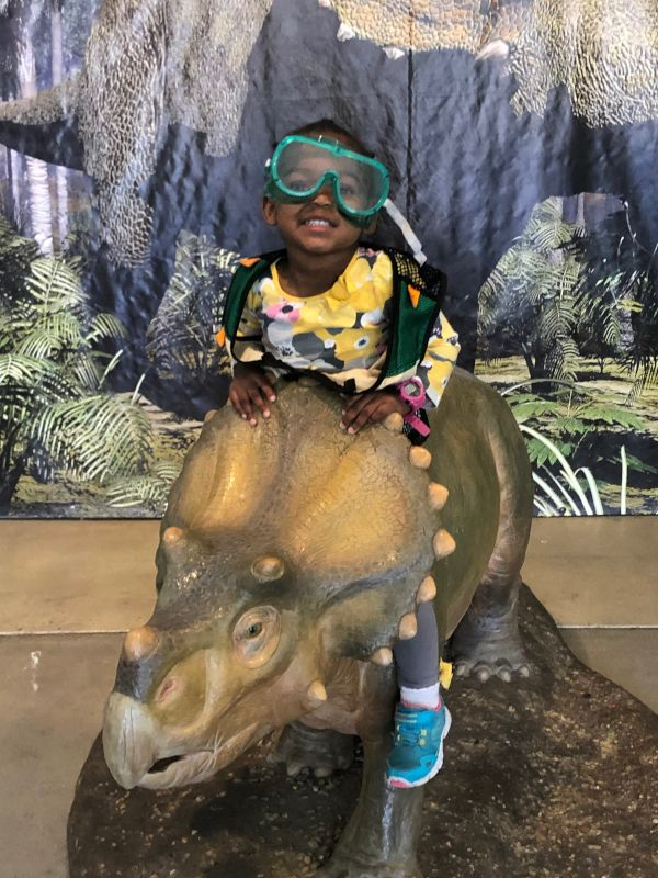 The Discovery Museum is One of Our Favorite Places to Visit!