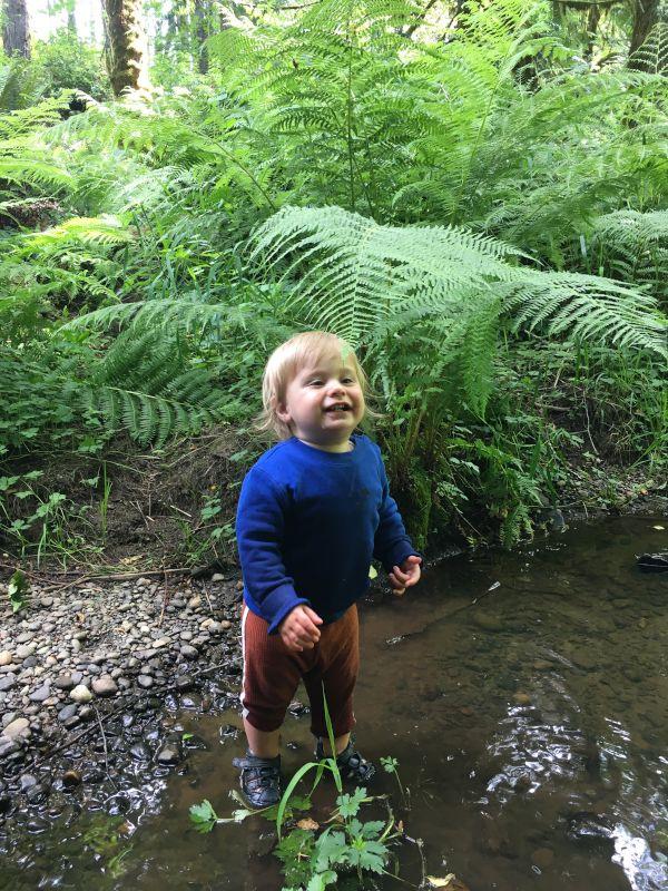 Splashing in a Creek