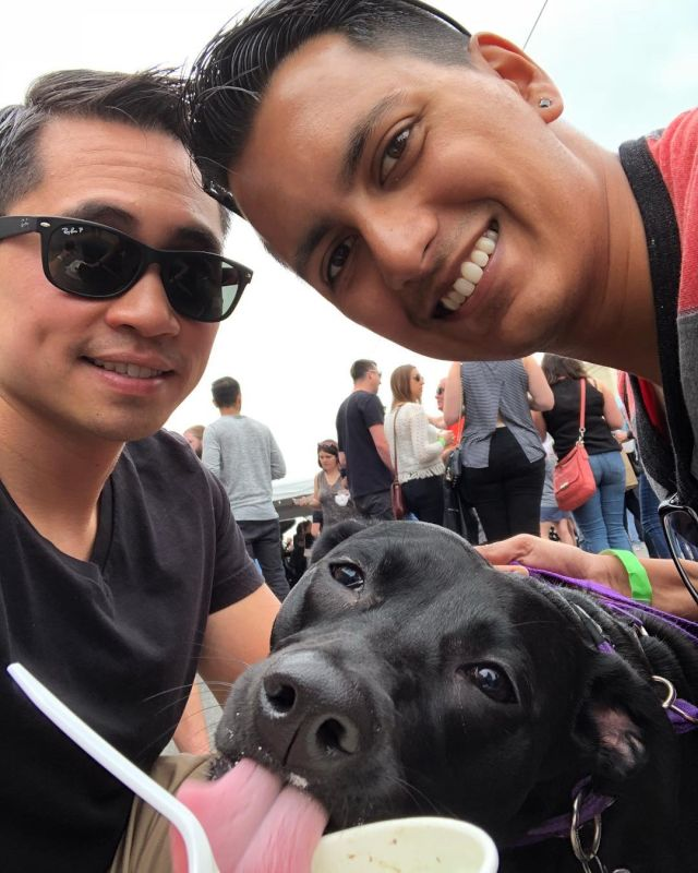Street Fair Fun with Our Dog, Lucy